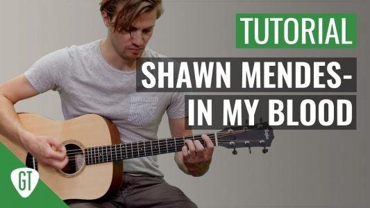Shawn Mendes – In My Blood | Gitarren Tutorial Deutsch